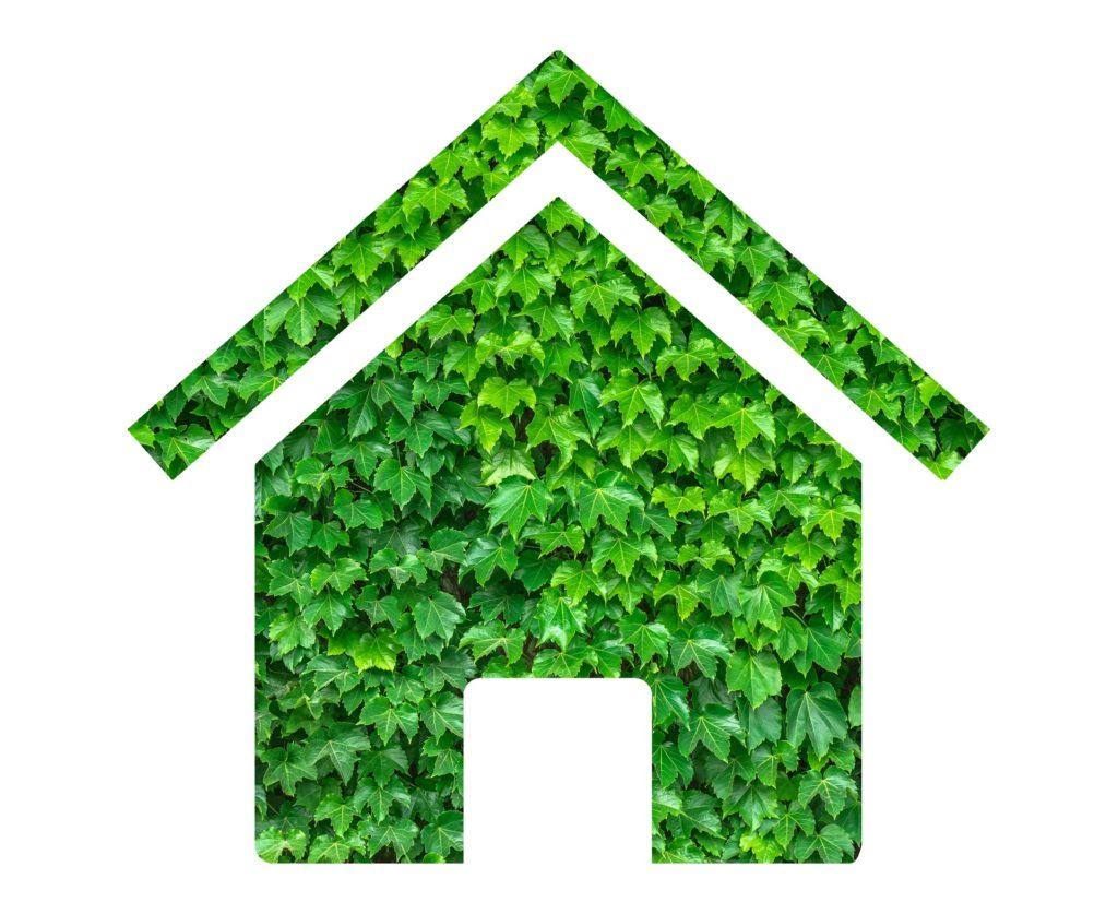 Czy da się zbudować ekologiczny dom? Sprawdź to!